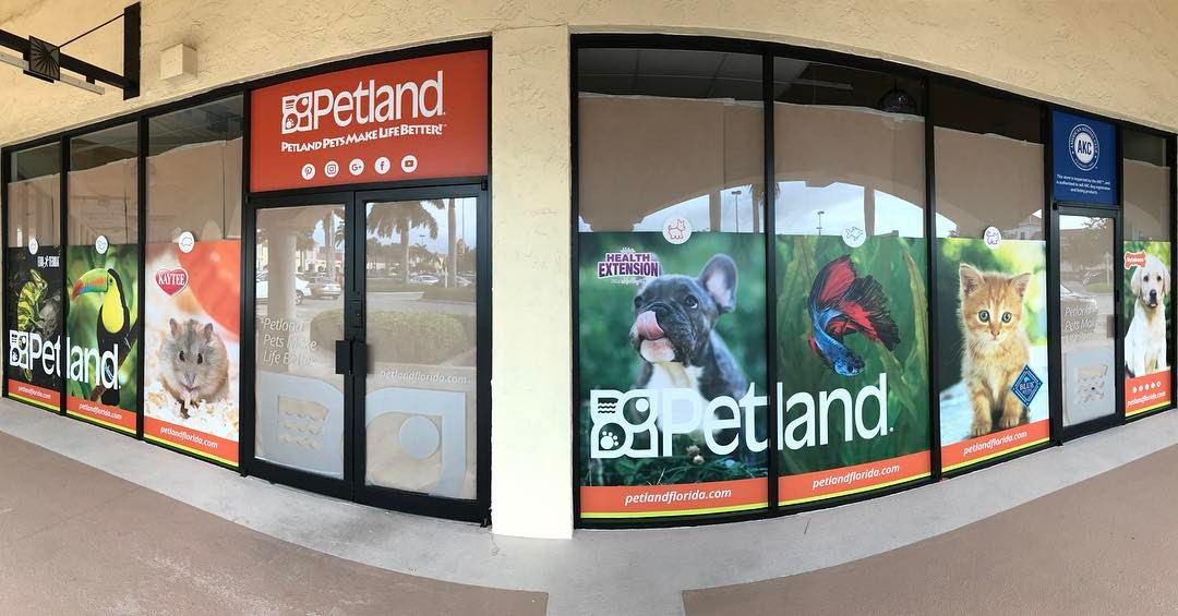 Petland Window Banners from Binick Imaging in Miami