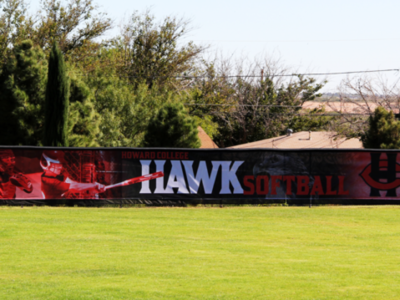 Hawl Mesh Banner
