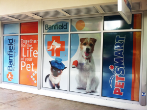 Pets-Mart-Window-Graphics